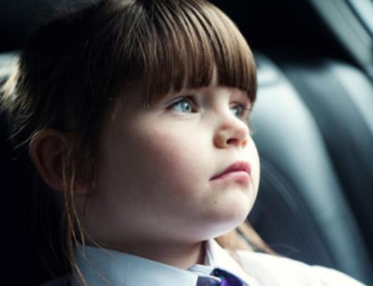 Via Trafik tilbyder rådgivning inden for alle trafikale emner, og trafiksikkerhed er omdrejningspunktet for alt, hvad vi gør.